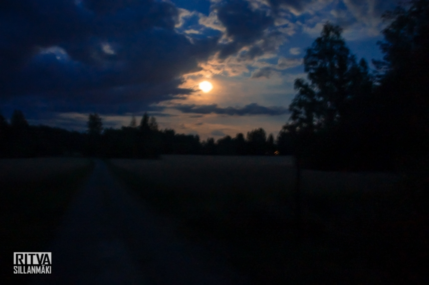 harvest moon (11 of 13)