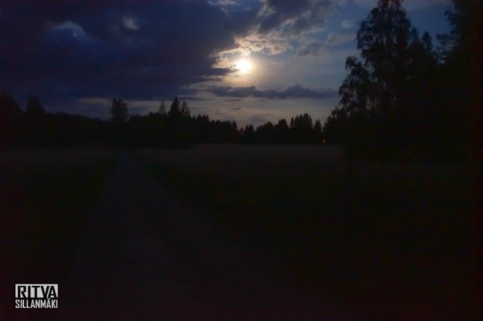 harvest moon (12 of 13)
