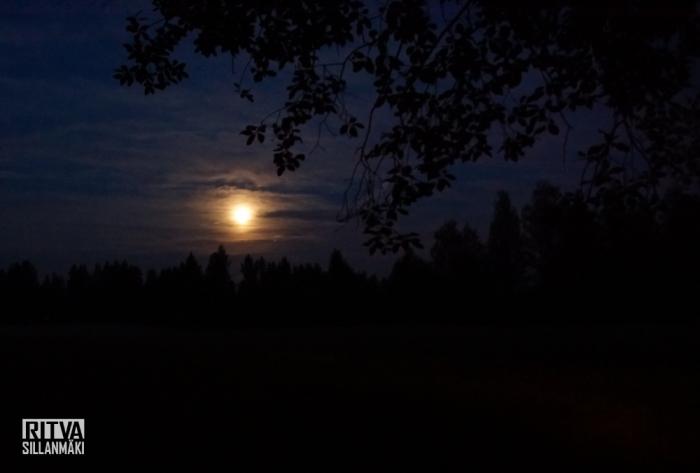 harvest moon (3 of 5)