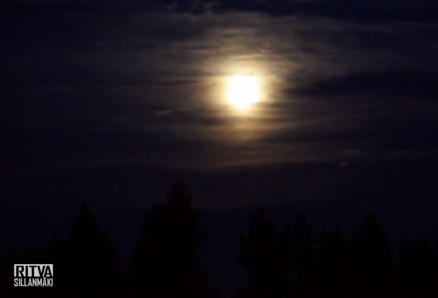 harvest moon (4 of 5)