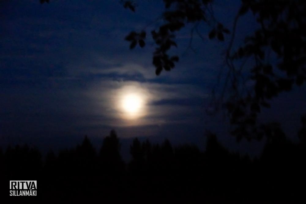 harvest moon (5 of 5)