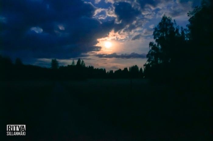 harvest moon (7 of 13)