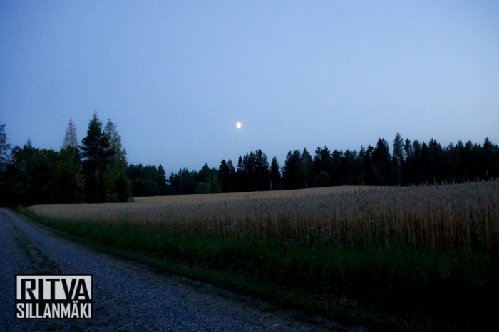 moon over fields (23 of 38)
