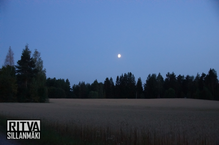 moon over fields (30 of 38)