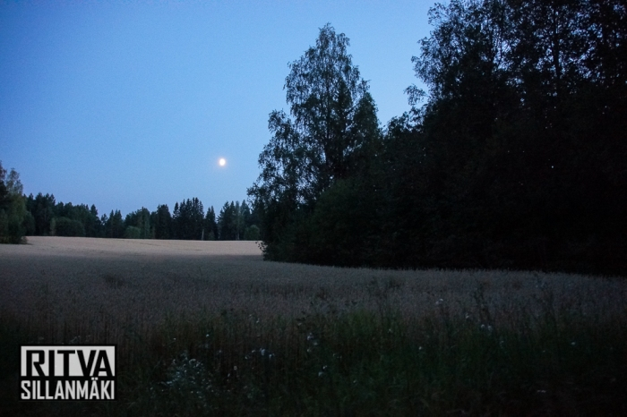 moon over fields (35 of 38)