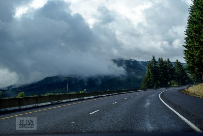 Oregon coastline - beaches-25