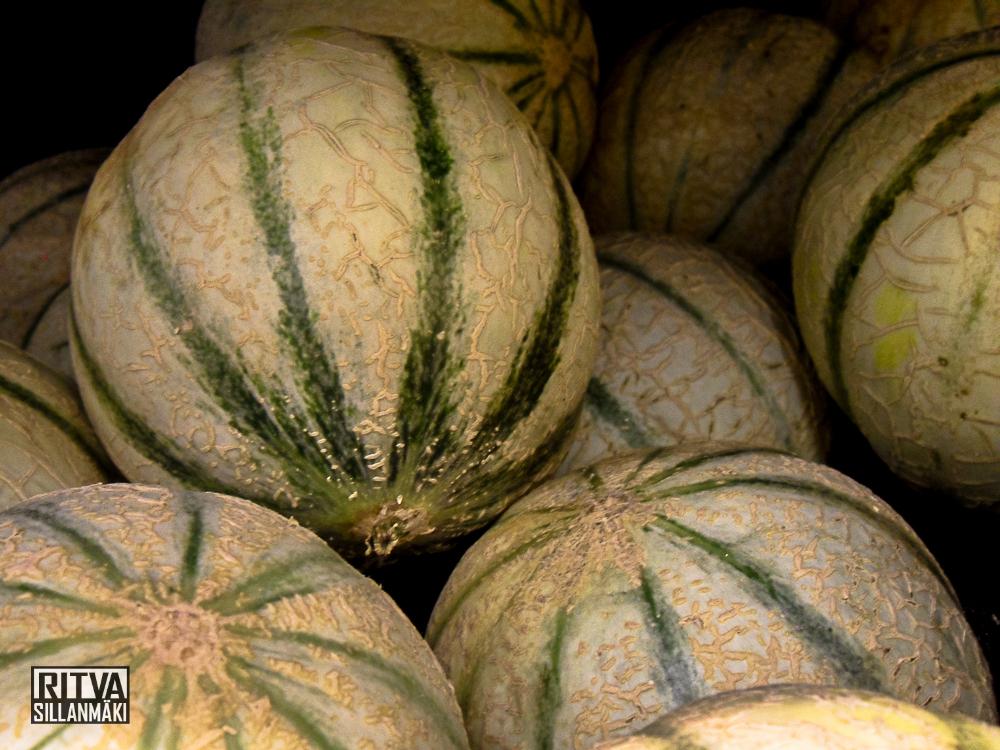Hunaja melonit