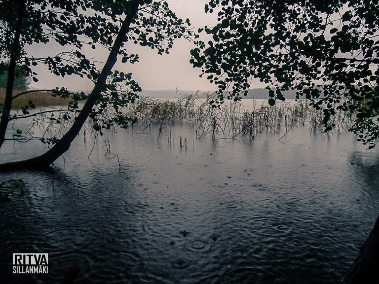 Humaljärvi (4 of 20)