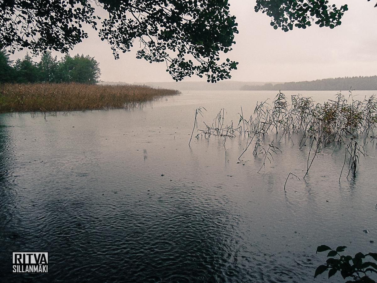 Humaljärvi (5 of 20)