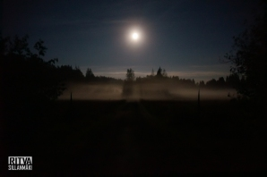 moon and mist (8 of 25)