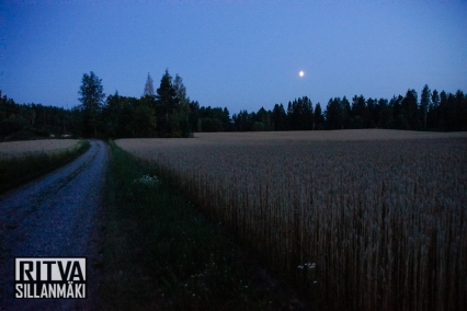 moon over fields (33 of 38)