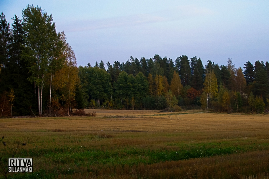Ruska / Autumn  colors