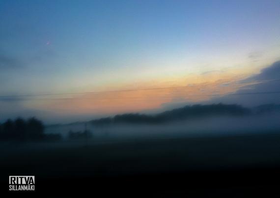 morning mist-001072