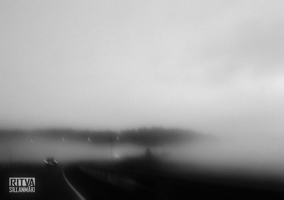 morning mist-001073