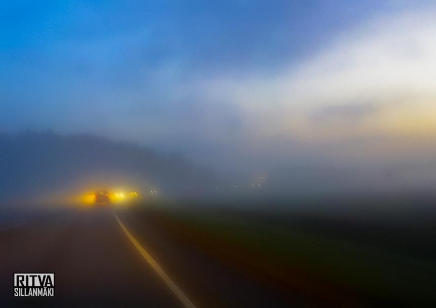 morning mist-001074