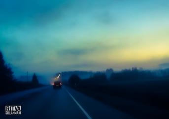 morning mist-001075