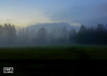 morning mist-001076