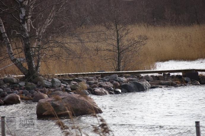 Ritva Sillanmäki -lauttasaari-21