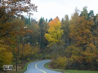 road-2613