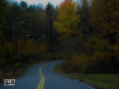 road-2614