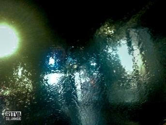 light (1 of 1)