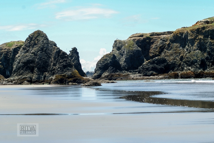 Oregon coastline - beaches-134