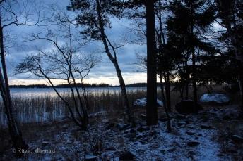 Ritva Sillanmäki-211214 (27 of 31)