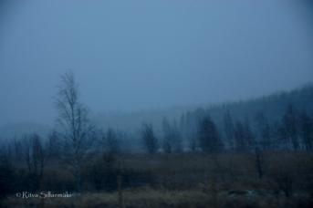 Ritva Sillanmäki-211214 (3 of 31)