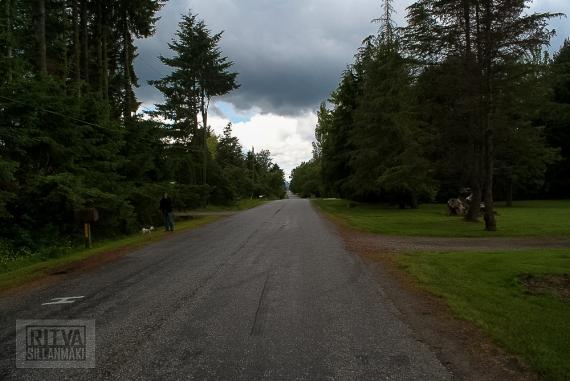RSillanmaki Paths (3 of 3)