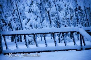 Lapland (103 of 112)