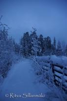 Lapland (40 of 112)