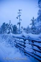 Lapland (48 of 112)