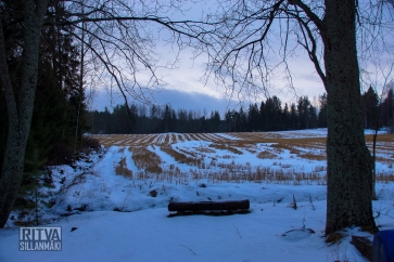 Ritva Sillanmäki 1.1.15-07711