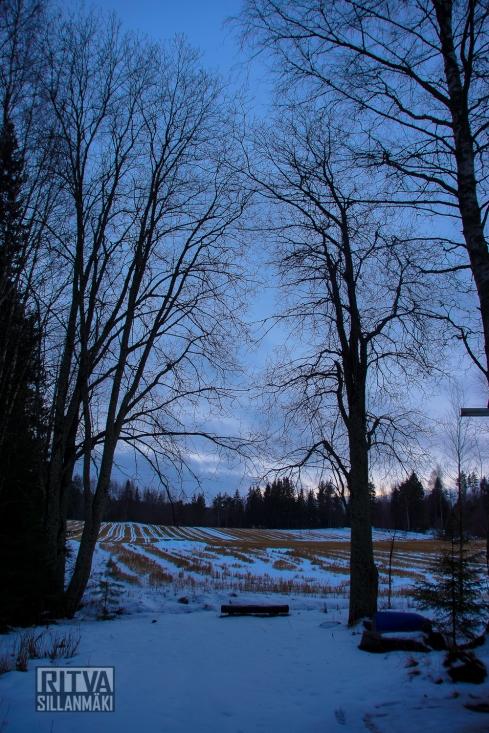 Ritva Sillanmäki 1.1.15-07717