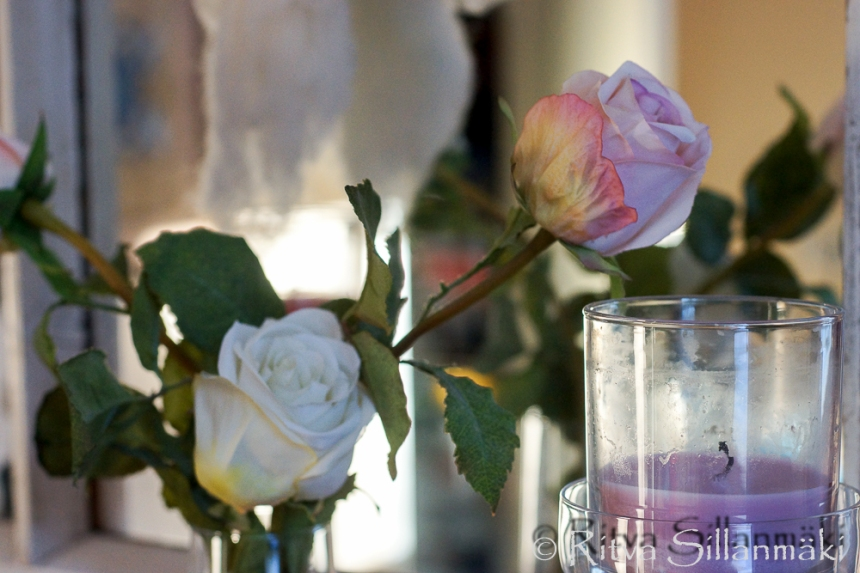 RS -Roses-09635