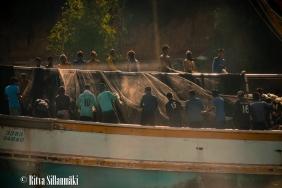 boats-14-2