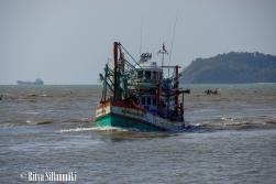 boats-6-2