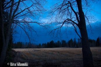 April 2015_ Ritva Sillanmäki (13 of 17)
