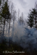 Ritva Sillanmäki - spring 2015 (4 of 102)