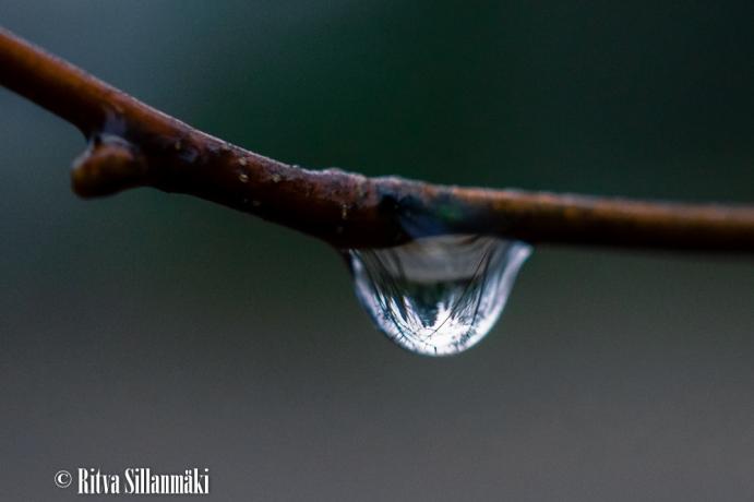 Ritva Sillanmäki_droplets (1 of 80)