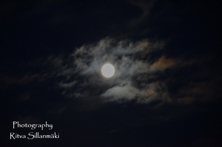 Blue moon 2015 (16 of 49)
