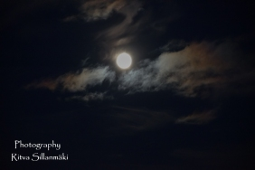 Blue moon 2015 (25 of 49)
