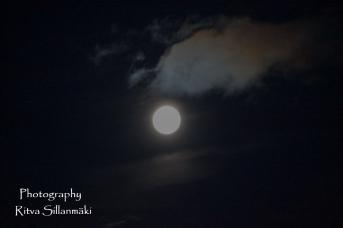 Blue moon 2015 (9 of 49)