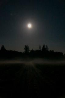 Full moon (12 of 21)