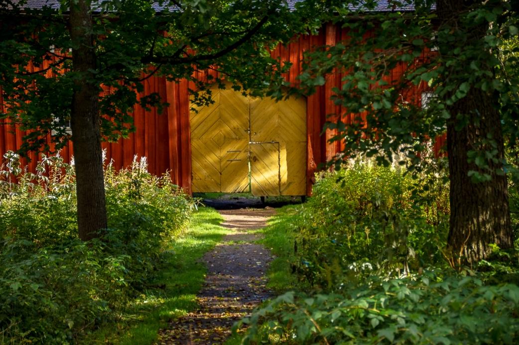 Autumn -yellow door