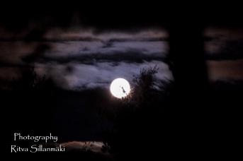 Super moon 2015 (15 of 29)