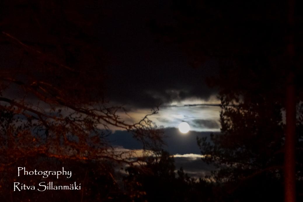 Super moon 2015 (17 of 29)