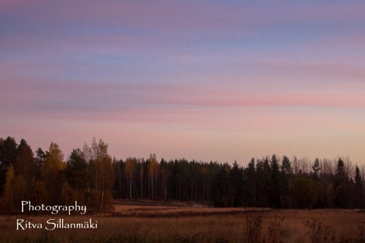 Country side autumn 2015 (148 of 179)