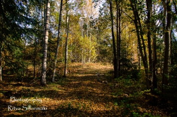 nature oct_15 (5 of 13)