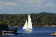 Stockholm (622 of 711)